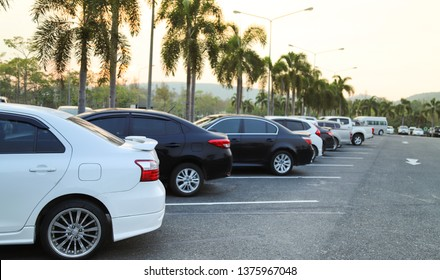 Closeup of rear, back side of white car and   other cars parking in outdoor parking lot with natural background in twilight evening.