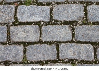 Close-up of rectangular, gray and rough-hewn paving stones
