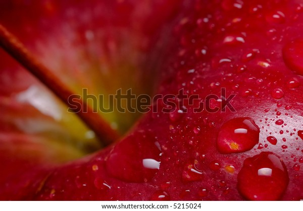 Close-up of red apple with water drops; black background