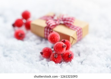 Close-up red berries with frost on the snow