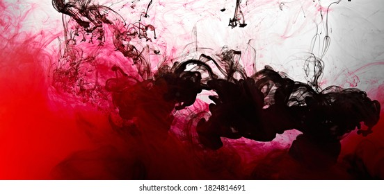Closeup of a red and black ink in water in motion isolated on white. Ink swirling underwater. Colored abstract smoke explosion effect. Abstract background with copy space..