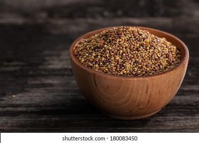 Close-up of Red Clover Sprouting Seeds in a Wooden bowl