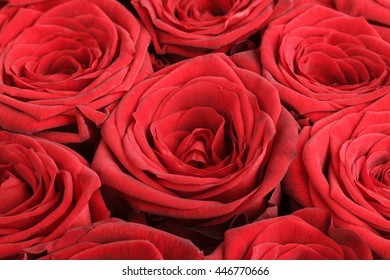 Closeup of red roses bouquet