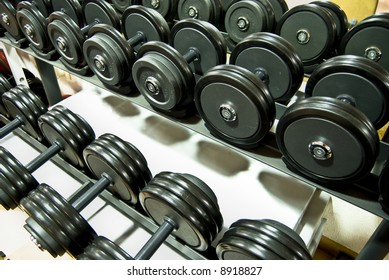 Closeup of a row of free weights in the gym