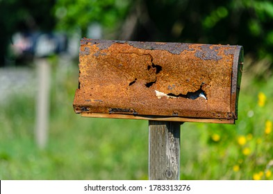 Close-up of a rusty, damaged rural mailbox in front of trees in the summer.