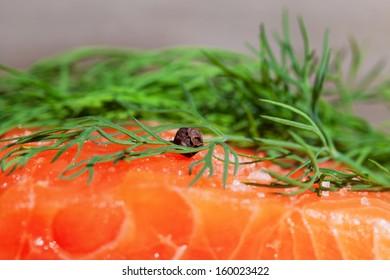 Closeup of salmon meat.