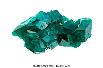 closeup of sample of natural mineral from geological collection - rough emerald-green Dioptase crystals isolated on white background