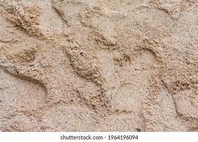 A closeup of sands with shoeprints