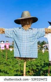 Closeup scarecrow in countryside of Thailand