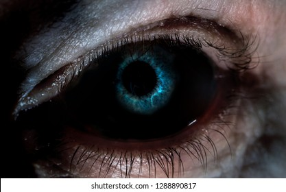 Close-up of a scary eye