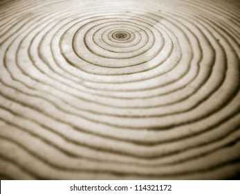 closeup of a section of pine wood showing annual rings, duo tone image, shallow depth of field