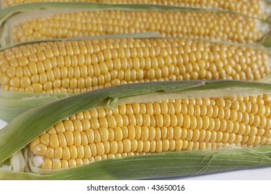 Closeup of several corns on the cob.