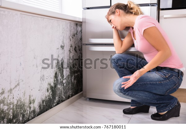 Close-up Of A Shocked Woman Looking At Mold On Wall