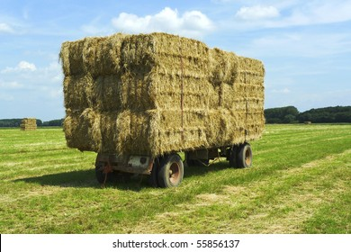Close-up shot of bales of hay on a trailer standing in a green field under a blue sky
