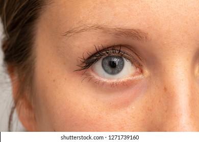 Closeup shot of beautiful woman's eye