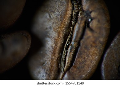 Closeup shot of coffee bean. background, texture