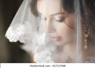 Closeup shot of elegant, brunette bride in vintage white dress posing under veil closeup. Bride portrait wedding makeup and hairstyle with diamond crown, fashion bride. Beautiful bride in veil