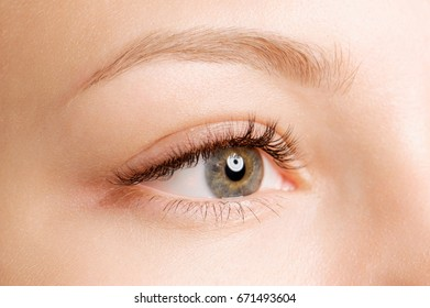 Closeup shot of female eye with day makeup