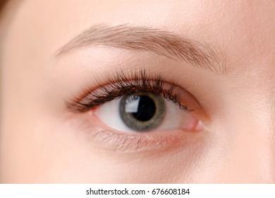 Closeup shot of female eye with day makeup. Perfect eyelashes.