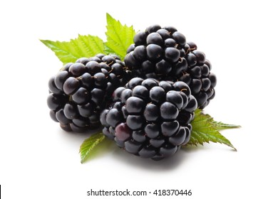 Closeup shot of fresh blackberries. Isolated on white background.