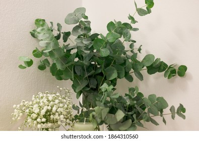 Closeup shot of a green indoor plant in the wedding table as a centerpiece