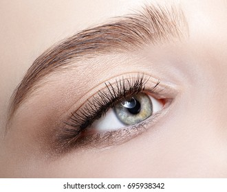 Closeup shot of human  female face with eye  day makeup