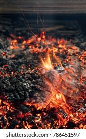 close-up shot of log burning in bonfire