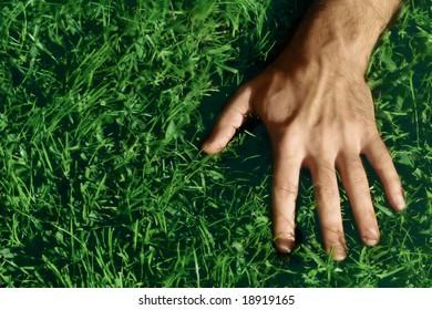 Closeup shot of a man's hand on green grass