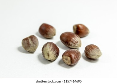 Close-up shot of multiple hazelnuts with blurry white background