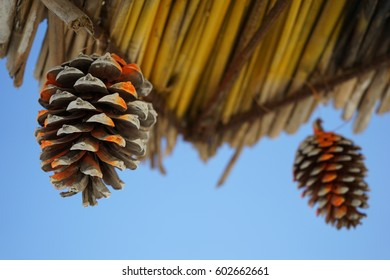 A closeup shot of a pinecone painted with orange and white paint used as a decoration of a beach straw umbrella with a blue sky in the background