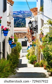 Closeup shot of street of flowers and plant pots, Mijas, Andalucia, Spain