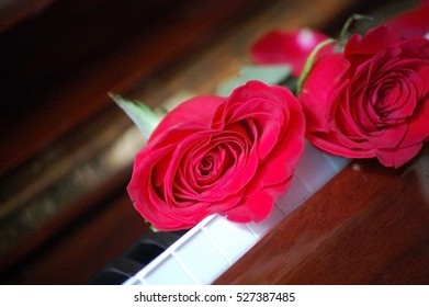 Close-up shot of two red roses atop piano keys.