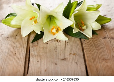Closeup shot of white lilies on wooden table.