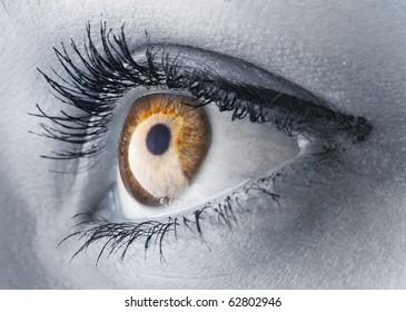 Closeup shot of a woman eye/Golden eye/