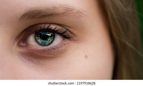 Close-up shot of woman's blue eye with beautiful makeup looking at camera.