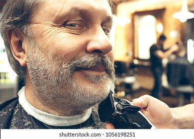 Close-up side view portrait of handsome senior bearded caucasian man getting beard grooming in modern barbershop. Hairdresser serving client, making beard haircut using shaving machine. Barber shop