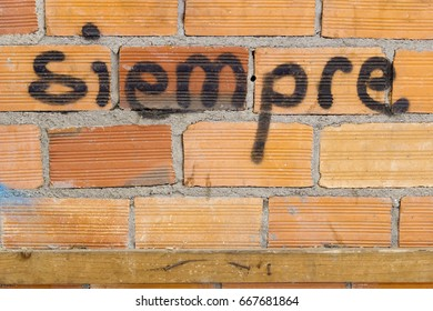 Close-up of Siempre word written in Spanish on brick wall in daylight