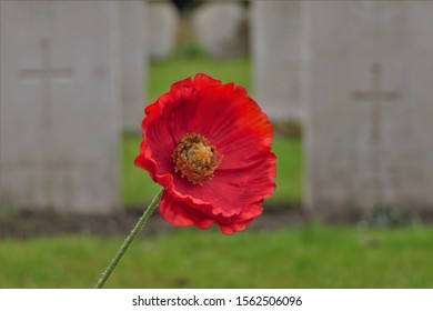 Closeup of a silk remembrance poppy at a war cemetery