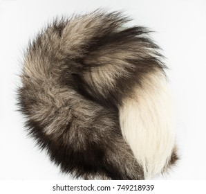 Closeup of silver fox tail on the white background