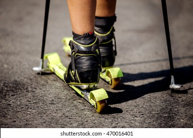closeup of ski rollers on legs of male athlete, next to a ski stick