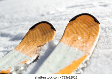 close-up of a ski in the snow