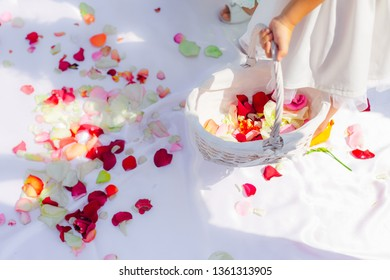 Close-up of a small girl's hand with a basket of petals of roses. wedding ceremony