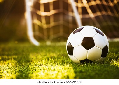 Closeup soccer ball on green grass at sunset