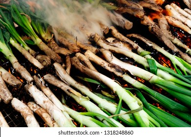 closeup of some calcots, sweet onions typical of Catalonia, being cooked in a barbecue