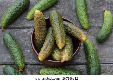 Closeup of some pickled and fresh cucumbers.
