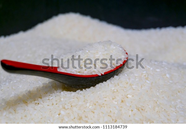 closeup a spoon of japanese rice