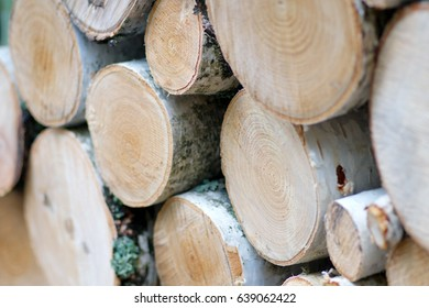 Closeup of stacked birch firewood