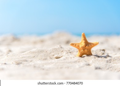 Closeup starfish on the sand beach background blue sky.  Summer and Travel Concept.