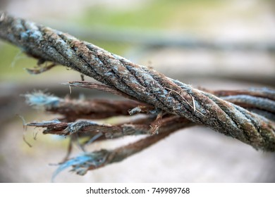 Close-up of a steel and rusty broken cable