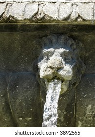 Close-up of stone fountain with a lion's head spraying water from its mouth, detail from fountain in Place des Vosges, Paris.